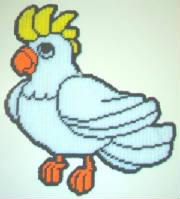 cockatoo15x13.jpg
