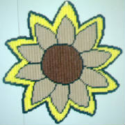 sunflower13x13.jpg