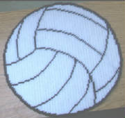volleyball13x13.jpg